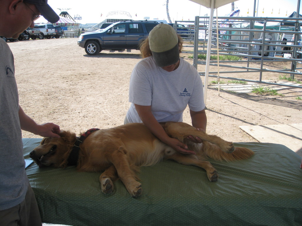 K-9 Massage Body Work